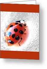 Ladybug Spectacular Greeting Card