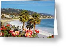 Laguna Beach Springtime Pano Greeting Card