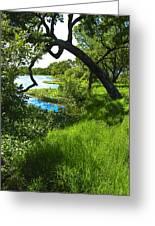 Laguna De Santa Rosa Greeting Card