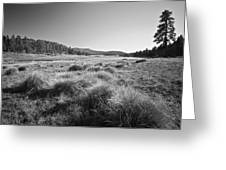 Laguna Meadows And Big Laguna Greeting Card