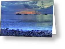 Lahaina Harbor Greeting Card by Kelly Wade