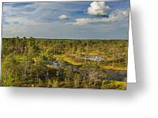 Lahemaa Panorama From Above Greeting Card