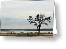 Lake 007 Greeting Card