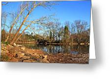Lake And Trees In Early Spring Greeting Card