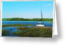 Lake At Hamony Fl Greeting Card