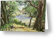 Lake At St Remy Greeting Card