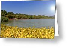 Lake Balaton, Hungary Greeting Card