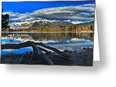 Lake Beauvert Roots Greeting Card