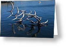 Lake Birds Greeting Card