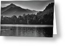 Lake Bled Rower - Slovenia Greeting Card