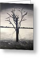 'lake Bonney' Greeting Card
