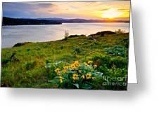 Lake Coeur D'alene Spring Greeting Card