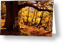 Lake District - Fall Colors Near Aira Force Greeting Card