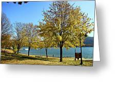 Lake George  12 Greeting Card