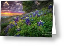 Lake Grapevine Twilight Greeting Card