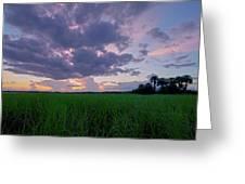 Lake Harney Sunset Greeting Card