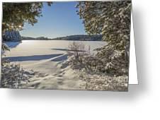 Lake In Winter Greeting Card