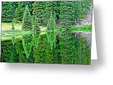 Lake Irene 12-1 Greeting Card