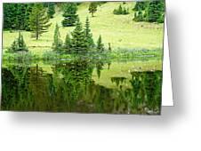 Lake Irene 12-2 Greeting Card