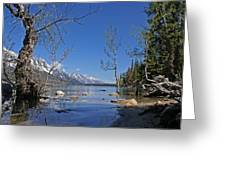 Lake Jenny Greeting Card