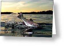 Lake Memories Greeting Card by Brian Pelkey