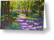 Lake Of The Hills Greeting Card