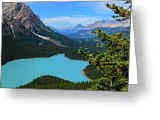 Lake Peyto Banff National Park Alberta Canada Greeting Card by Ola Allen