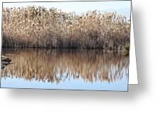 Lake Reflexion Greeting Card