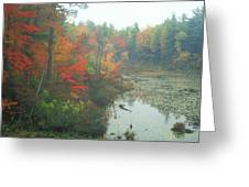 Lake Rohunta Foliage Greeting Card