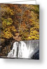 Lake Solitude Falls Greeting Card