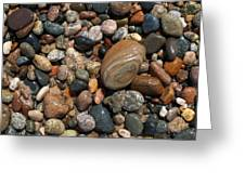 Lake Superior Stones Greeting Card by Don Newsom