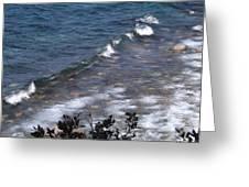 Lake Tahoe Waves Greeting Card