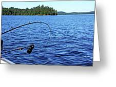 Lake Trout Fishing Greeting Card