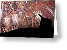 Lake Union July 4th B294 Greeting Card