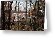 Lake Wallenpaupack Through The Trees Greeting Card