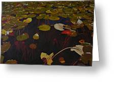 Lake Washington Lilypad 7 Greeting Card