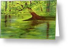 Lake Wilson Hawaii #35 Greeting Card