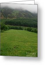 Lakeland Meadow  Greeting Card