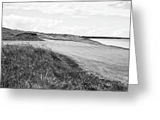 Lakeside Beauty - Bw No. 17 Greeting Card