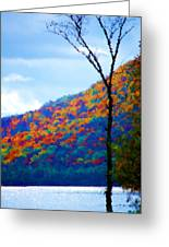 Lakeside Greeting Card