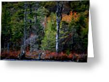 Lakeside In The Autumn Greeting Card