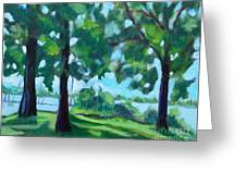 Lakeside Shadows Greeting Card