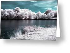 Lakeside4 Greeting Card