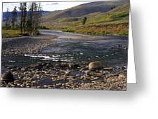 Lamar Valley 3 Greeting Card