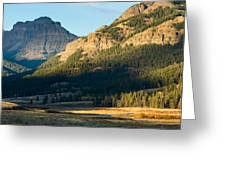 Lamar Valley Impressions #1  Greeting Card