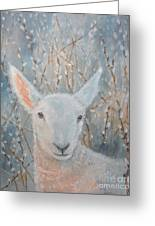 Lamb In The Willows Greeting Card
