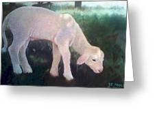 Lamb Of God Greeting Card by Rebecca Poole