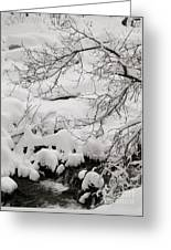 Lambs Canyon In Winter Greeting Card