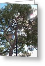 Lamp And Tree Greeting Card