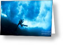 Lanai Diver Greeting Card